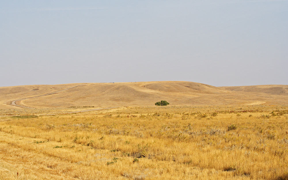 Picture of Grasslands National Park.