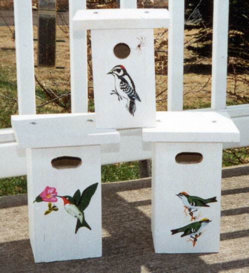 Nest Boxes for Tree Swallows, Black-capped Chickadee and Downy Woodpecker